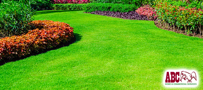 "How to Start an Organic Lawn & Garden | National Lawn Care Month"" /></a></p> <p><a href="